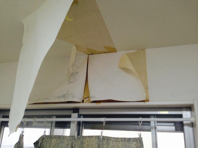 leak-peeling-wallpaper.png